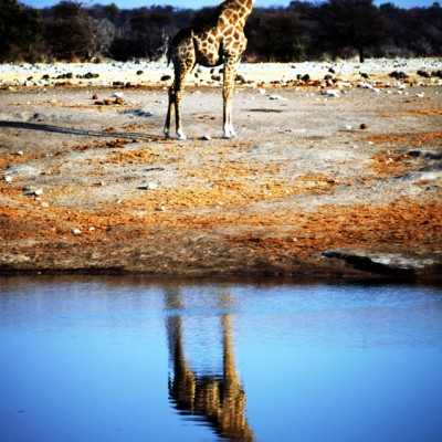 namibia1586