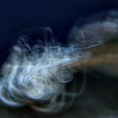 pesci201