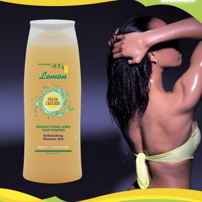 Brochure_Lemon_def-6