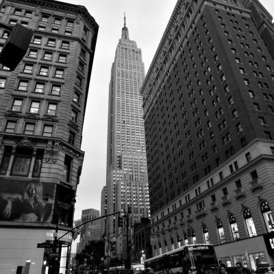 new york 464